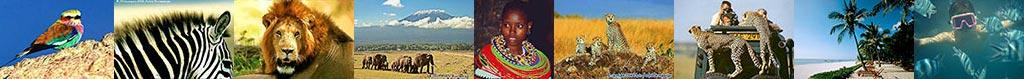 Organiser votre voyage en Tanzanie