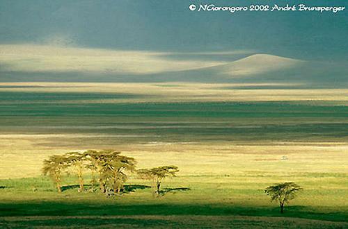 le cratère du N'Gorongoro en Tanzanie