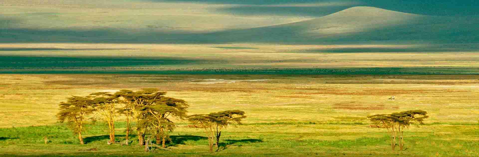 Cratère du N'Gorongoro en Tanzanie