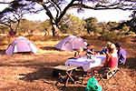 Camping en tentes igloo en brousse en Tanzanie