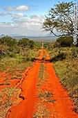 Paysage de Tanzanie