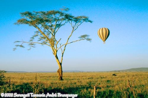 montgolfière serengeti en Tanzanie